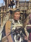 tribeman1
